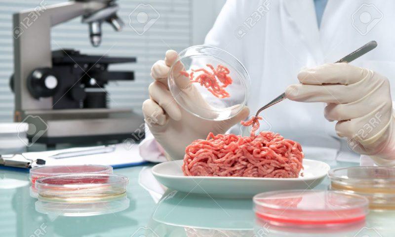 Carne non carne: in arrivo un prodotto creato al 100% in laboratorio